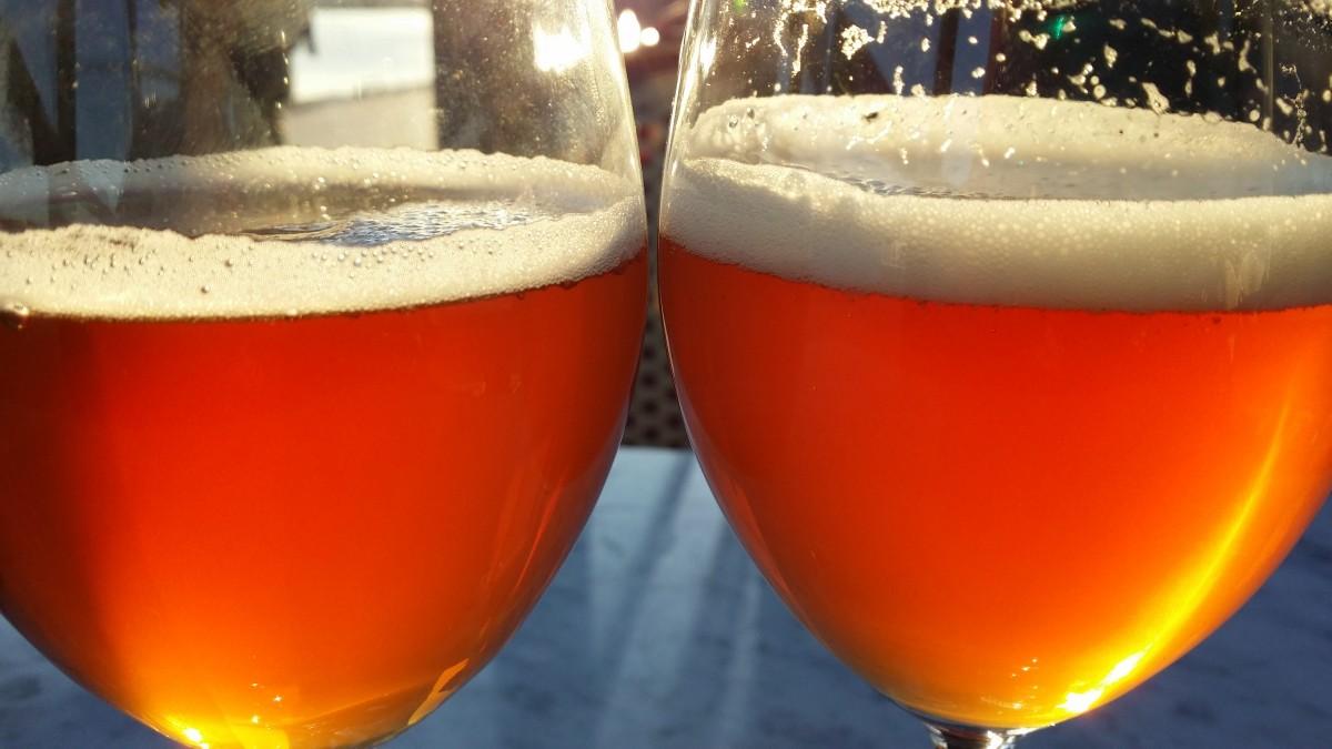 מה ההבדל בין בירה מסוננת ללא מסוננת?